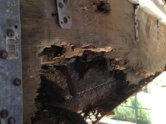 Severely Rotted Support Beam